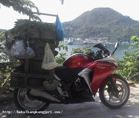 wpid-cbr-dagang-sayur-jayapura_mas-sayur_bakul-kangkung-jpr-3-jpg